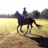 Sporthorsecali from Diamond Bar | Man | 36 years old | Capricorn