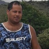 Oski looking someone in Puerto Rico #4